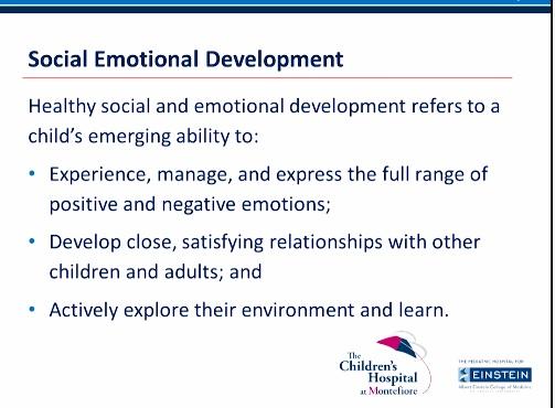 brain-10a-social-emotional-development