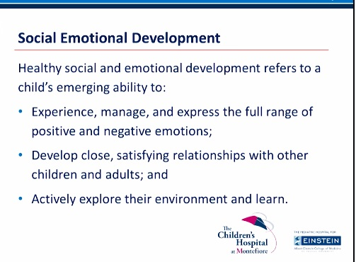 brain-10a-social-emotional-development